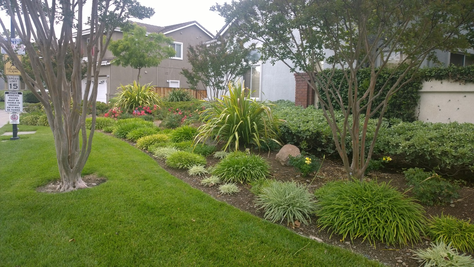 Land services in fremont residential landscape for Garden maintenance jobs